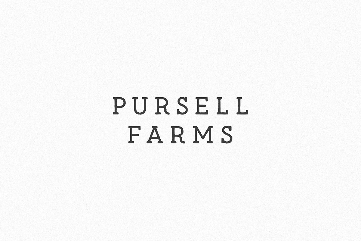 Pursell Farms Logo | Digitopia